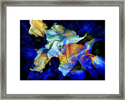 The Heart Of My Garden Framed Print by Hanne Lore Koehler