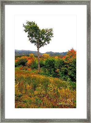 The Heart Of New Hampshire Framed Print by Catherine Reusch Daley
