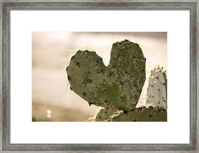 Framed Print featuring the photograph The Heart Of Texas by Debbie Karnes