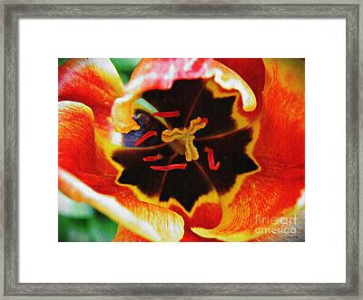 The Heart Of The Matter 2 Framed Print by Sarah Loft