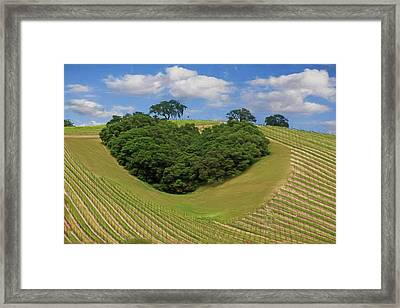 The Heart Of The Matter Framed Print by Donna Kennedy