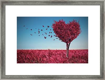 The Heart Tree Framed Print