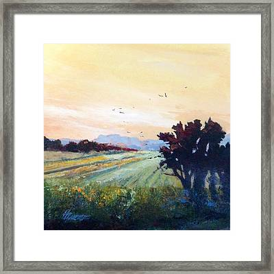The Heartland Framed Print