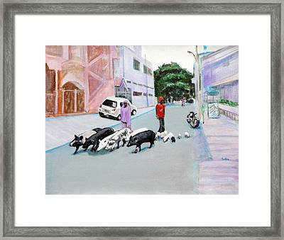 The Herd 5 - Pigs Framed Print by Usha Shantharam