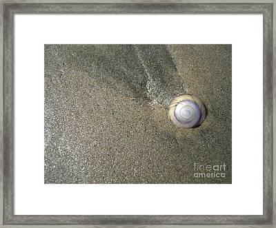 The Hidden Treasures Of The Sand Framed Print by Anna Eigler