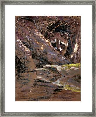 The Hideout Framed Print by Christopher Reid
