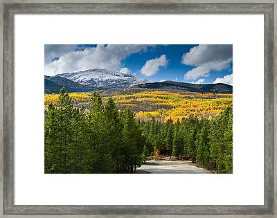 The High Road Framed Print by Tim Reaves