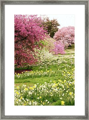 Framed Print featuring the photograph The Hills Are Alive by Jessica Jenney