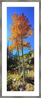 Framed Print featuring the photograph The Hillside - Panorama by Shane Bechler