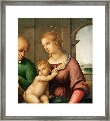 The Holy Family Framed Print by Raphael