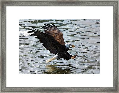 The Hook Framed Print by Mike Dawson