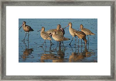 The Horde Framed Print