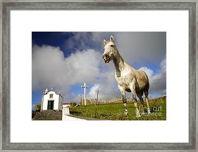 The Horse And The Chapel Framed Print by Gaspar Avila