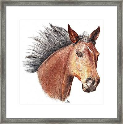 Framed Print featuring the drawing The Horse by Mike Ivey
