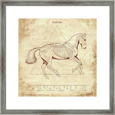 The Horse's Canter Revealed Framed Print