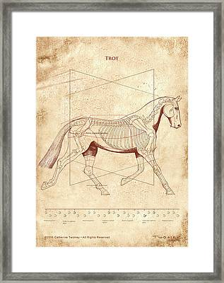 The Horse's Trot Revealed Framed Print