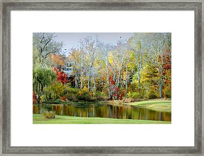 The House Guest Framed Print
