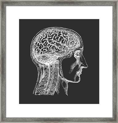 The Human Brain - White On Black Framed Print by Village Antiques