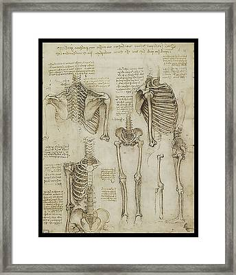 Framed Print featuring the painting The Human Ribcage by James Christopher Hill
