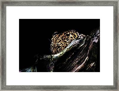 The Hunt Framed Print by Martin Newman