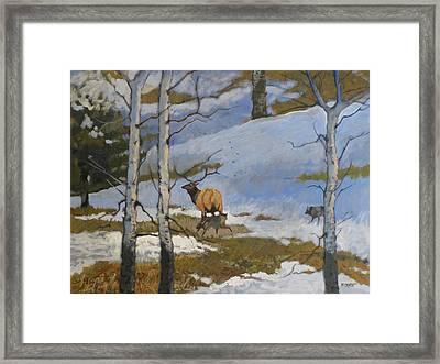 The Hunt Framed Print by Robert Bissett