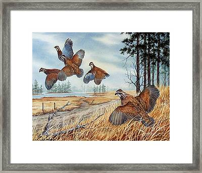 The Hunt  Sold Framed Print