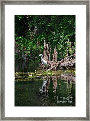 The Huntress Framed Print