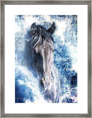 The Ice King Framed Print by Jamie Mammano