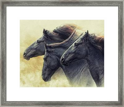 The Immortals Framed Print by Ron McGinnis