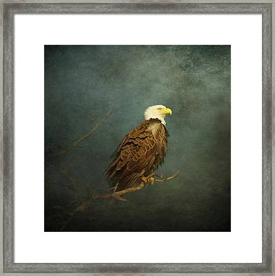 The Impending Storm Framed Print by Carla Parris