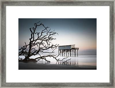 The Indomitable Lady Framed Print by Ivo Kerssemakers