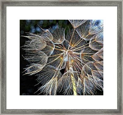 The Inner Weed Framed Print