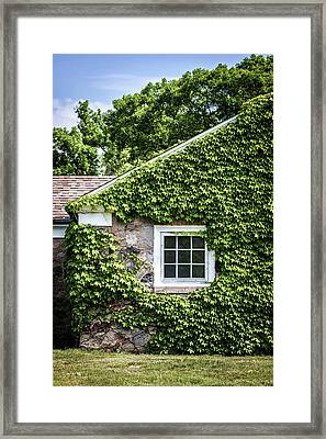 The Ivy House Framed Print