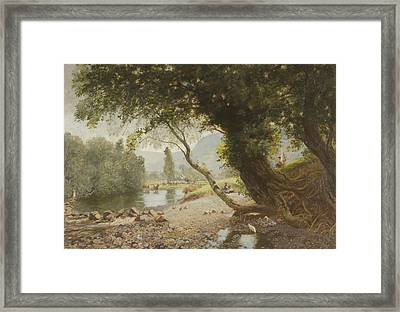 The Ivy, The Oak And The Bonnie Birken Tree Framed Print by David Murray