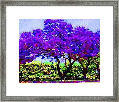 Framed Print featuring the painting The Jacaranda by Angela Treat Lyon