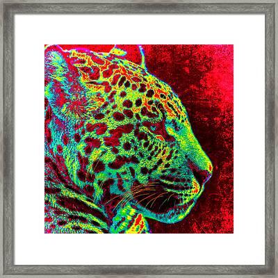 The Jaguar Framed Print