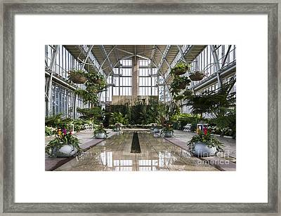 The Jewel Box Framed Print by Andrea Silies