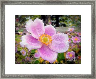 The Jewel Of The Garden Framed Print