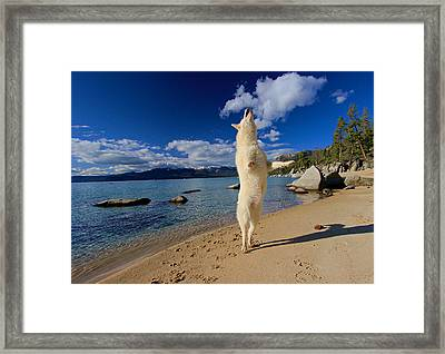 The Joy Of Being Well Loved Framed Print by Sean Sarsfield