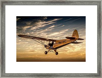 The Joy Of Flight Framed Print