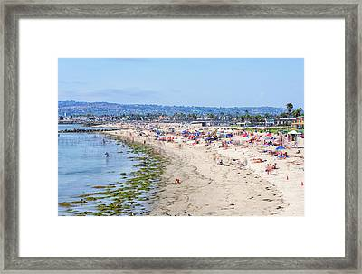 The Joy Of Summer Framed Print
