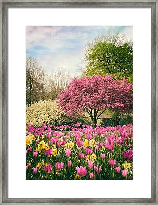 Framed Print featuring the photograph The Joy Of Tulips by Jessica Jenney