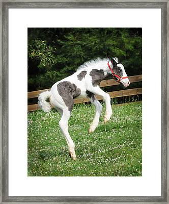 The Joys Of New Life Framed Print
