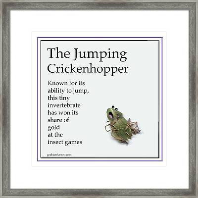 The Jumping Crickenhopper Framed Print by Graham Harrop