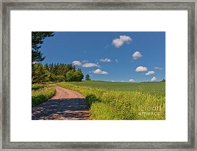 The June Day Framed Print by Veikko Suikkanen