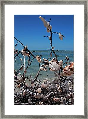 Framed Print featuring the photograph The Kindness by Michiale Schneider
