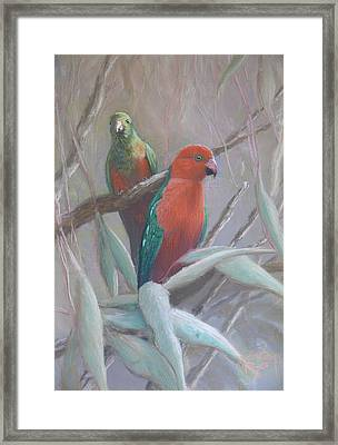 The King And Queen - King Parrots Framed Print by Leigh Rust
