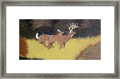 The King And Queen Framed Print by Dalton Shiflet