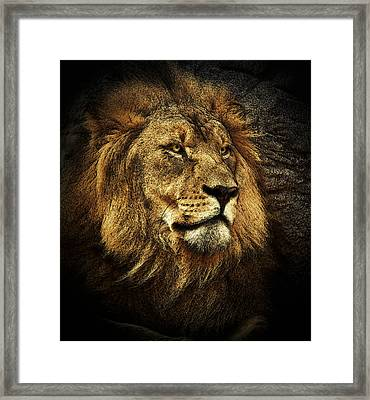 Framed Print featuring the mixed media The King by Elaine Malott