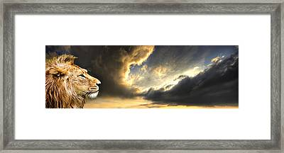 The King Of His Domain Framed Print by Meirion Matthias